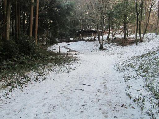 201201125・雪トトロ15P