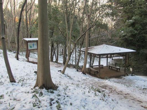 201201125・雪トトロ19P