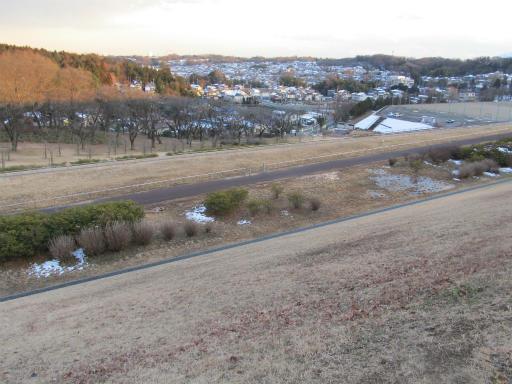 201201125・狭山湖美観03P
