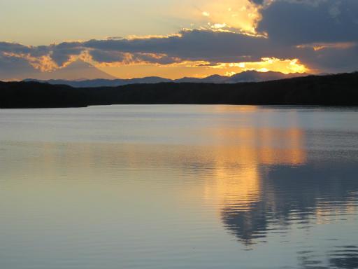 201201125・狭山湖美観06P