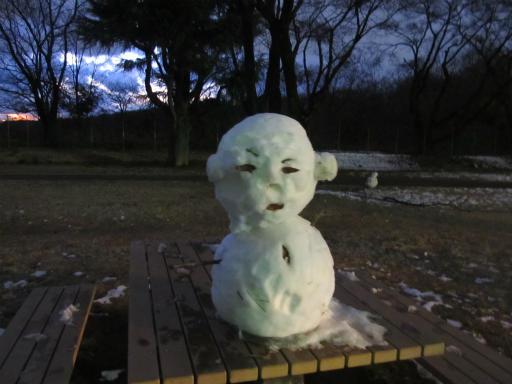 201201125・狭山湖美観15P
