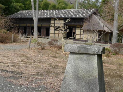 20120127・宝登山1-11L