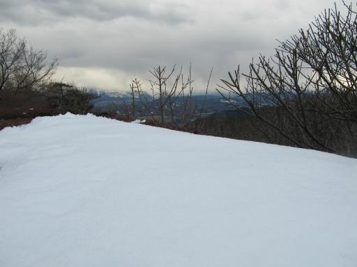 20120127・宝登山2-23P