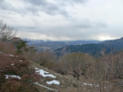 20120127・宝登山2-22L