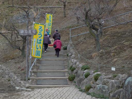 20120127・宝登山2-24L