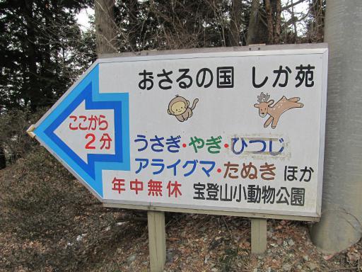20120127・宝登山ネオン8