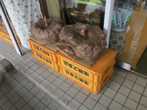 20120127・宝登山ビミョー13