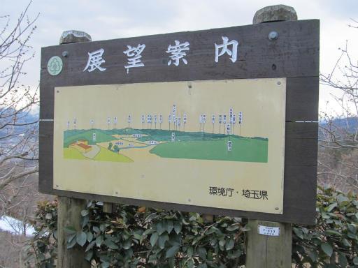 20120127・宝登山3-03P