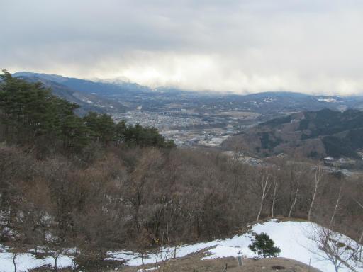 20120127・宝登山3-12P