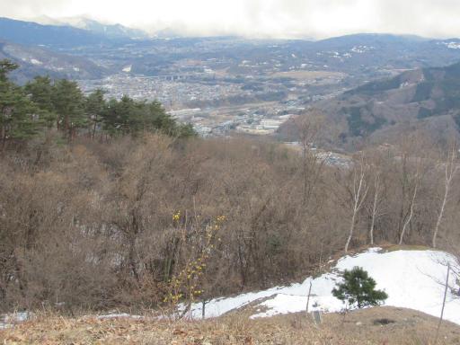 20120127・宝登山3-14P