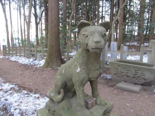 20120127・宝登山4-06P