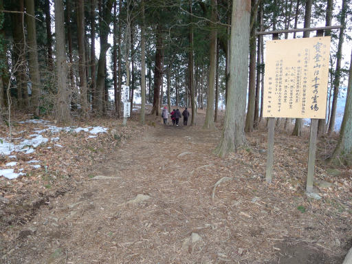 20120127・宝登山4-02L
