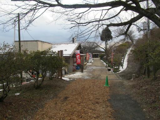20120127・宝登山4-18P