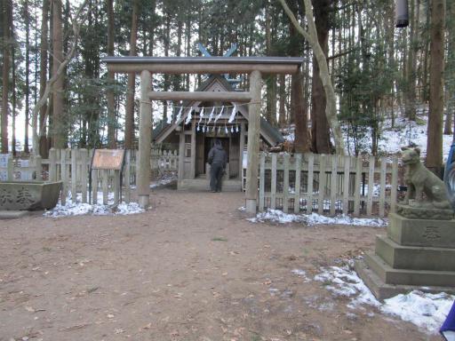 20120127・宝登山4-13P