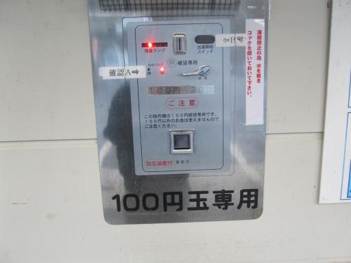 20120127・宝登山5-08P