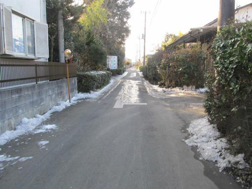 20120128・雪の所沢05
