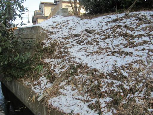 20120128・雪の所沢01
