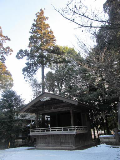 20120128・雪の所沢03