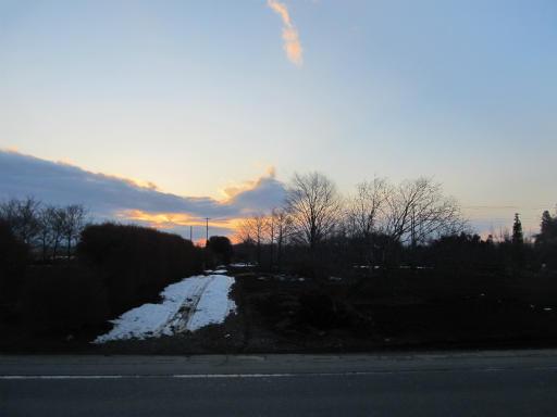 20120128・雪の所沢17