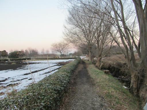 20120128・雪の所沢20