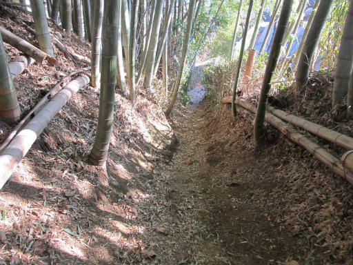 20120129・所沢散歩1-06