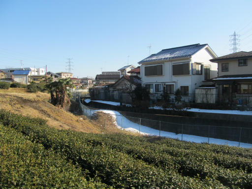 20120129・所沢散歩1-03