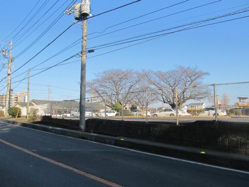 20120129・所沢散歩1-12