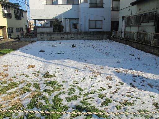 20120129・所沢散歩1-18