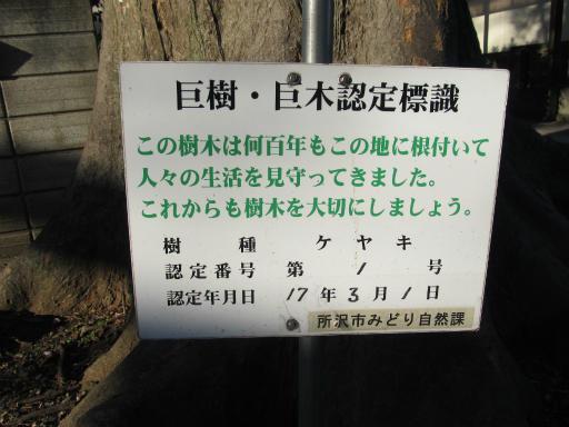 20120129・所沢散歩2-28