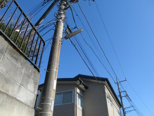 20120129・物好き1