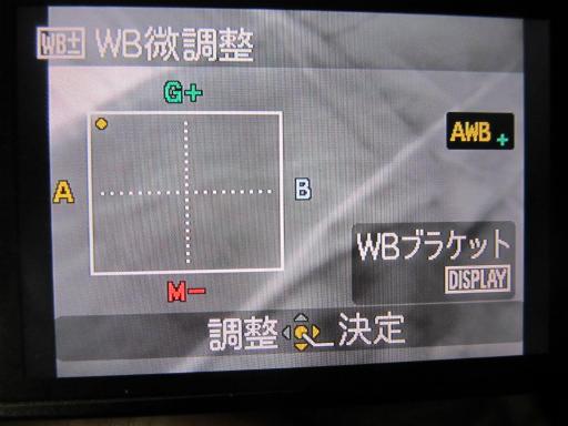 20120204・ルミックス裏ワザ1-09