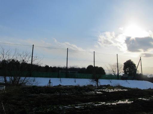20120128・雪の所沢空1