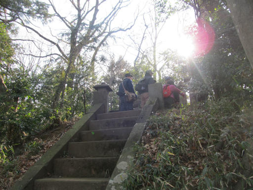 20120205・緑の森05