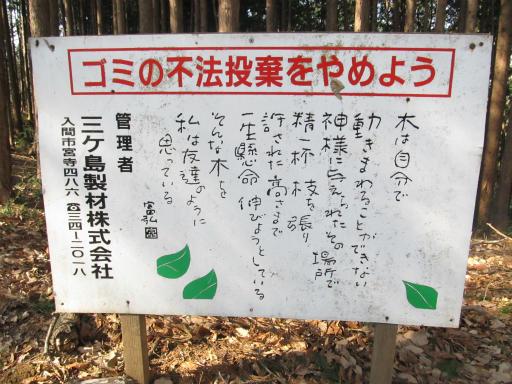 20120205・緑の森18