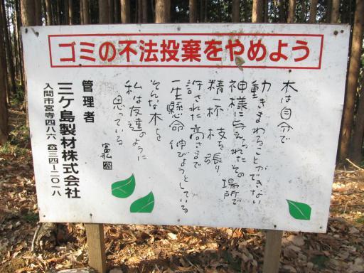 20120205・緑の森18・拡大