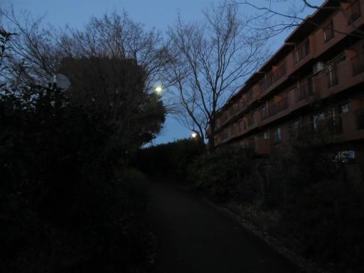 20120209・早朝狭山湖01