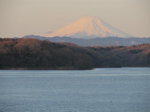 20120209・早朝狭山湖03