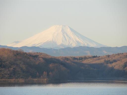 20120209・早朝狭山湖15