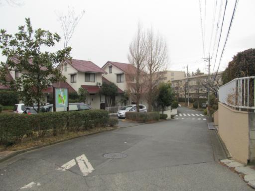 20120212・中氷川神社02