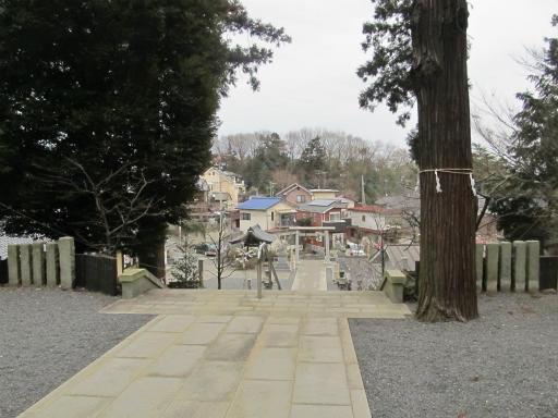 20120212・中氷川神社07