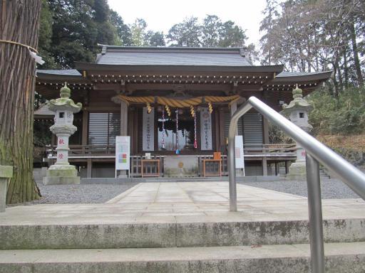 20120212・中氷川神社09
