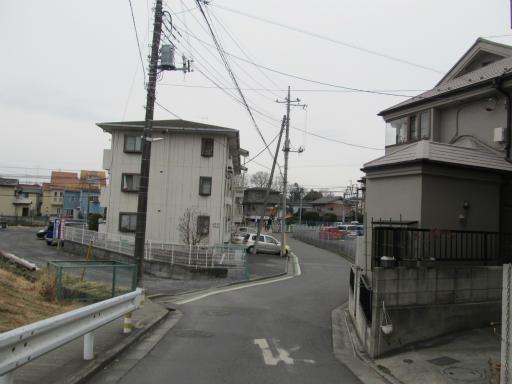 20120212・中氷川神社13