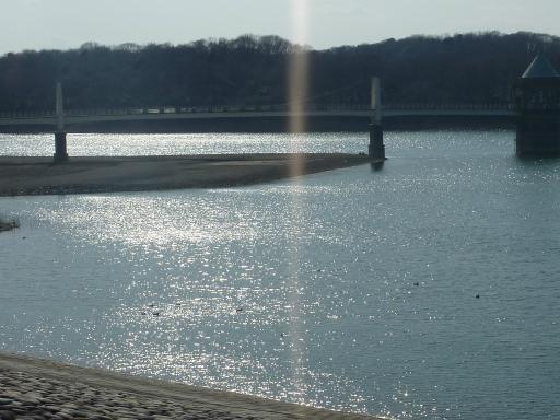 20120229・20110312・狭山湖2周年6