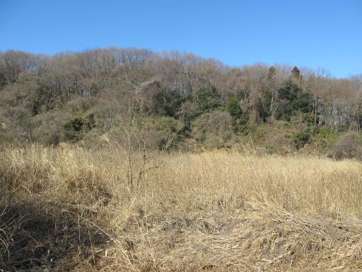 20120219・自然観察会04