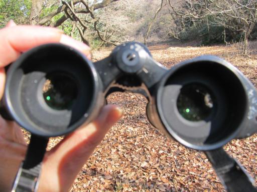 20120219・自然観察会07