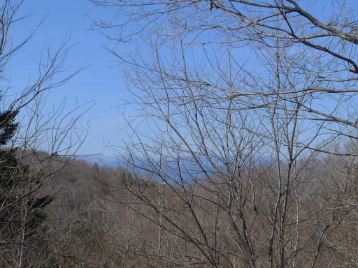 20120219・自然観察会19L