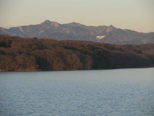 20120209・早朝狭山湖大06