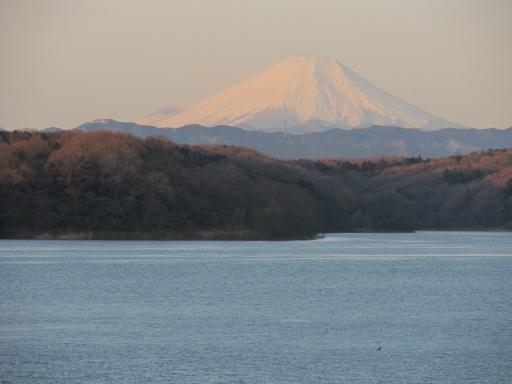 20120209・早朝狭山湖大02