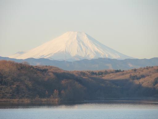 20120209・早朝狭山湖大13
