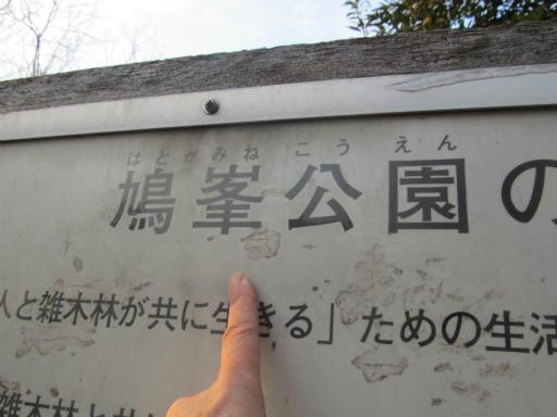 20120218・荒幡散歩3-12